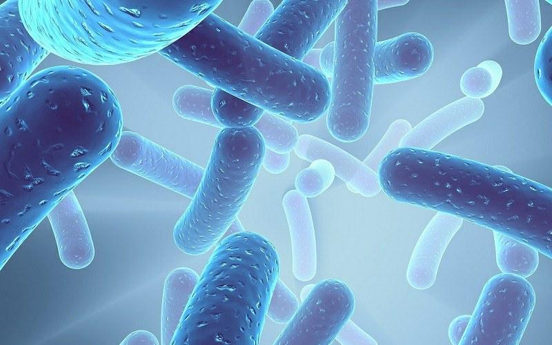 Sabinsa's LactoSpore® Enters Cosmeceutical Market