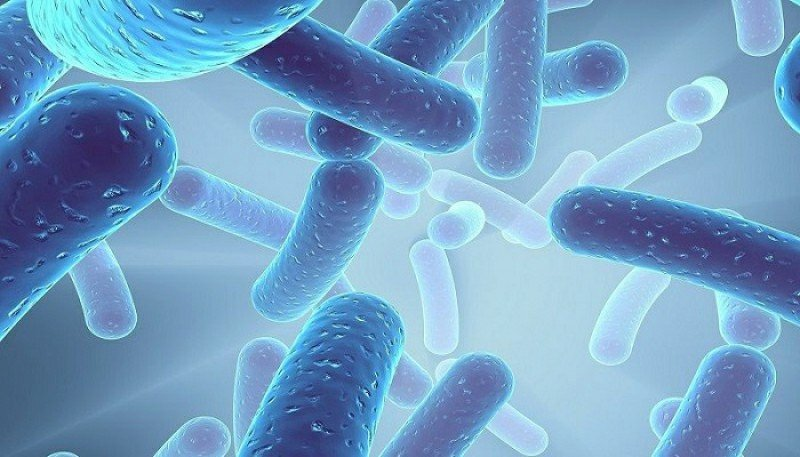Sabinsa's Shelf Stable Probiotic LactoSpore® Found to Reverse Depression Symptoms in Patients Suffering From IBS According to Published Study
